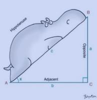 mathmemagician_5