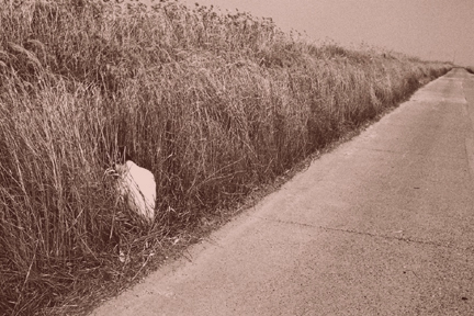 Aloneness_3_2